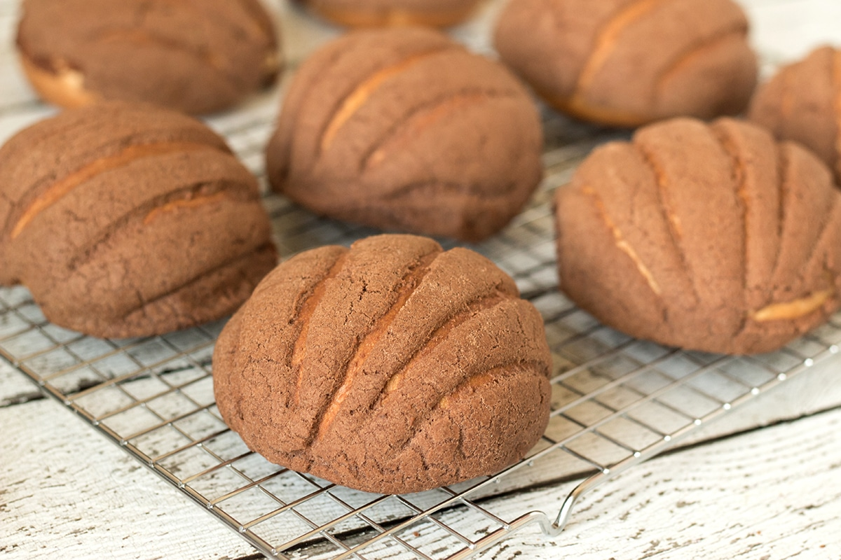 Mexican Sweet Bread has many varieties, but Conchas (Shells) is the most popular one. They are so good!