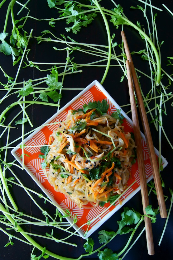 21 outstanding Shirataki Noodle Recipes to Enjoy This Zero-Calorie No-Carb Pasta from Japan! #glutenfree #paleo #keto #lowcarb | cookingtheglobe.com