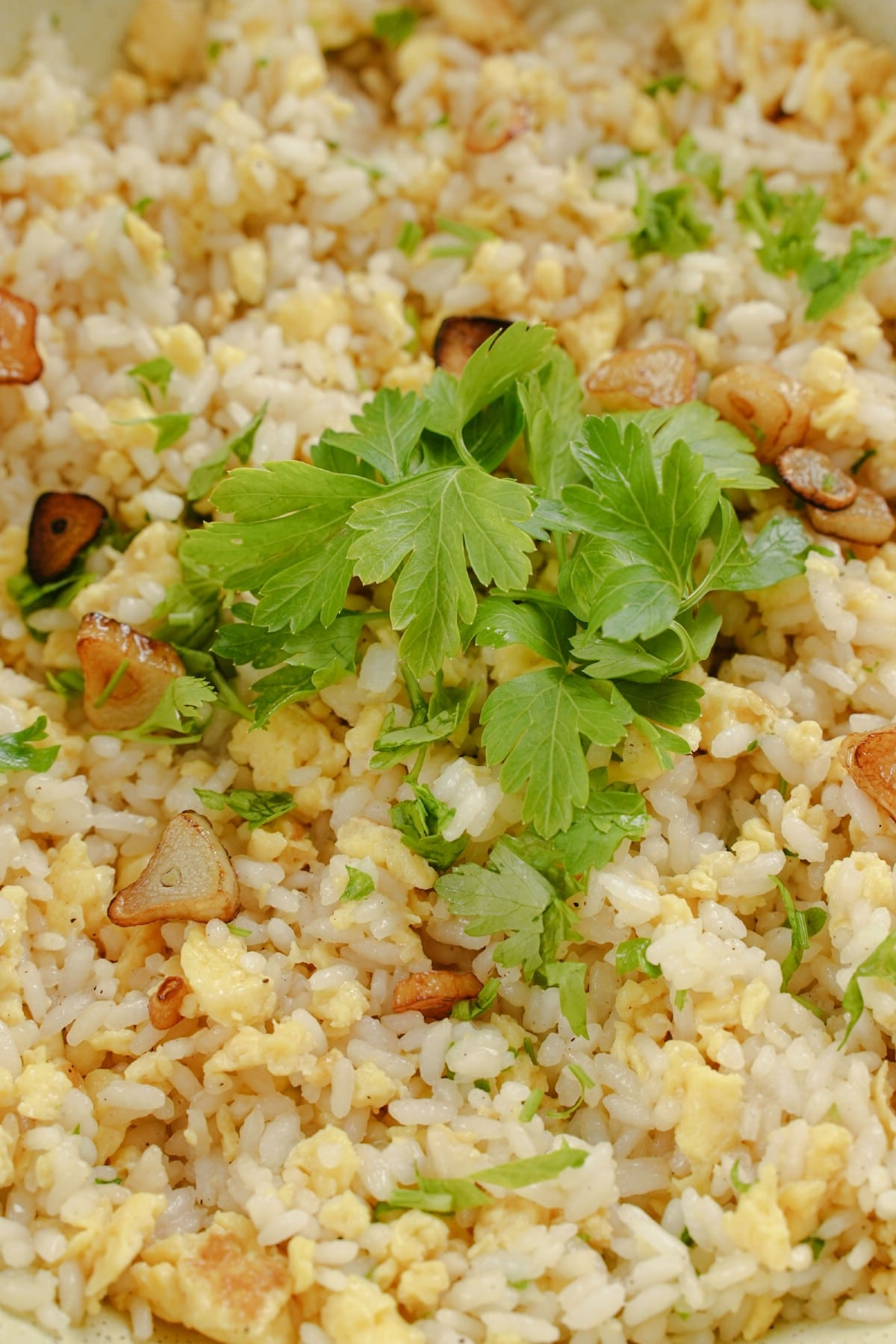 Close up image of rice in bowl with sliced garlic chips and parsley on top