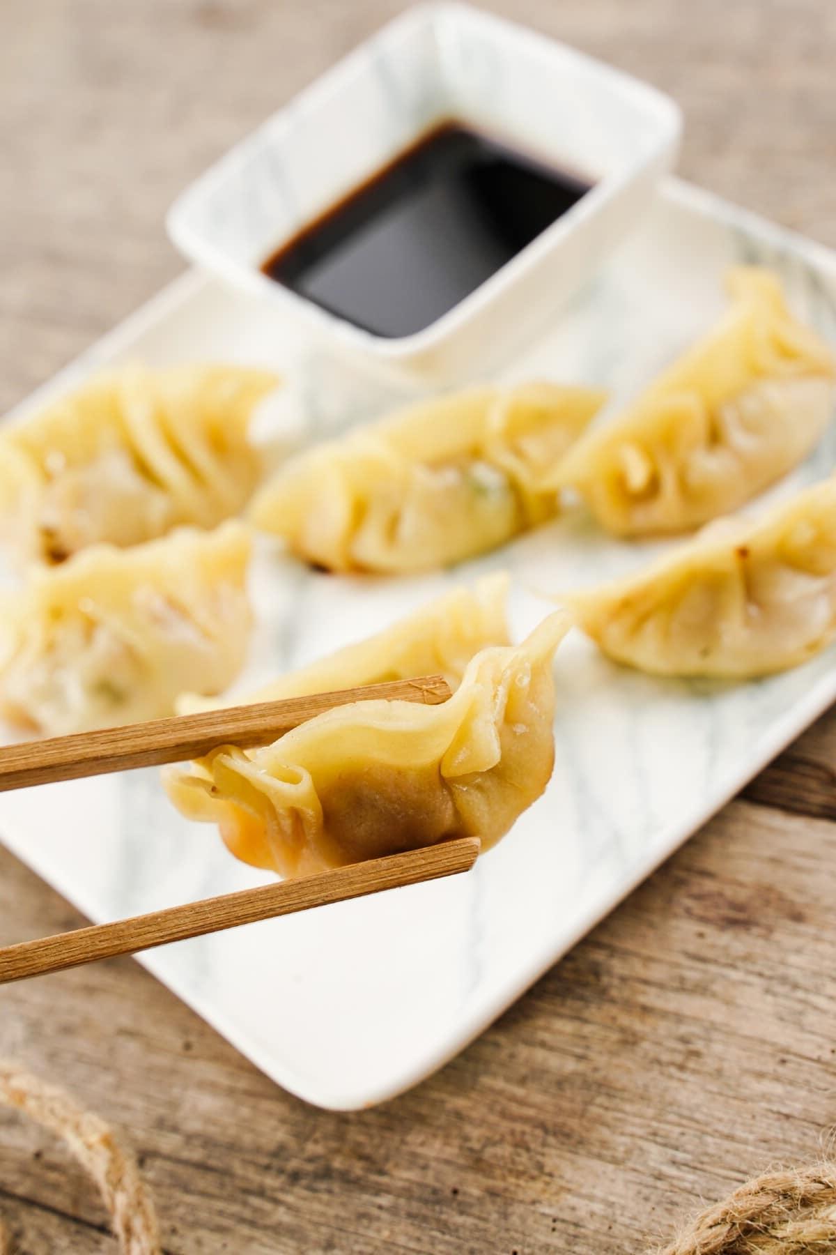 Wooden chopsticks holding dumpling up above white plate of cooked dumplings