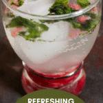 Pomegranate Mint Cooler (2)