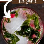 Pomegranate Mint Cooler (3)