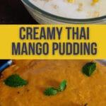 Thai Mango Pudding PIN (3)